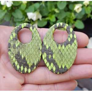 Creole earrings set with oval pendant of green Snakeskin
