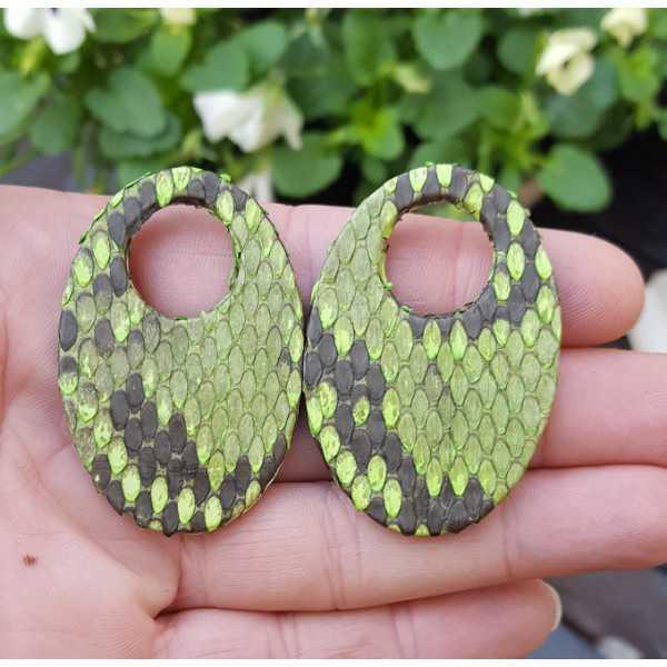 Creole Ohrringe set mit ovalem Anhänger von green Snakeskin