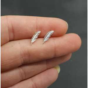 Silver oorknopjes spring