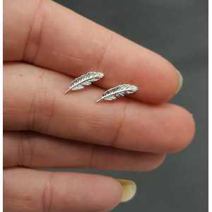 Zilveren oorknopjes veer