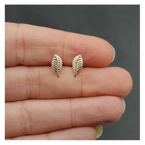 Silver oorknopjes leaf
