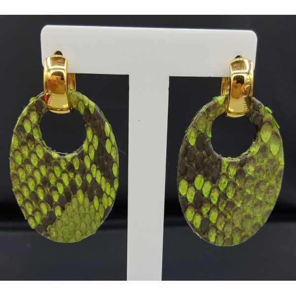 Creoles with oval light green Snakeskin pendant