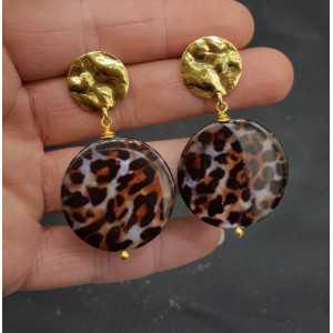 Goud vergulde oorbellen met ronde luipaard schelp