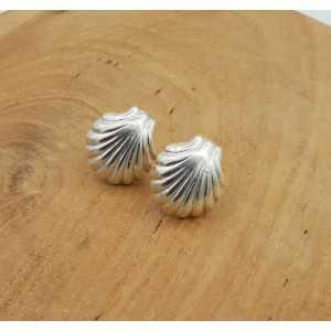 Silber oorknoppen shell