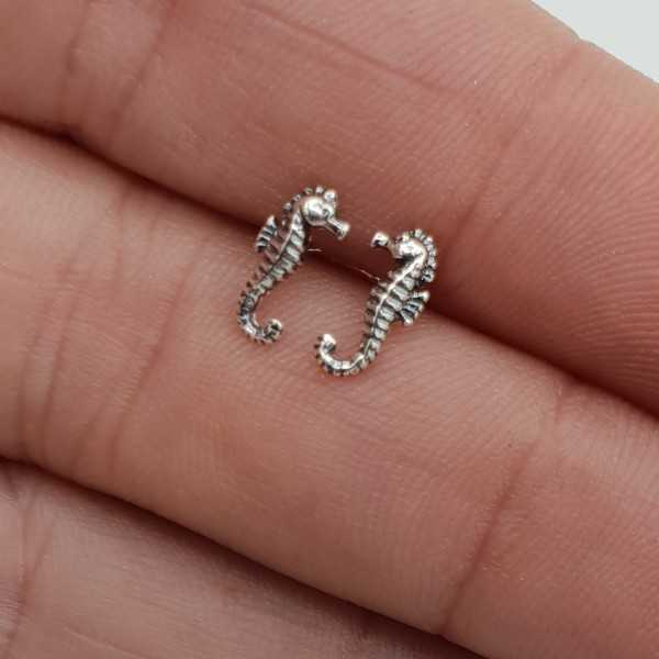 Silver small seahorse oorknopjes