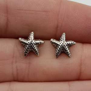 Silver starfish oorknopjes