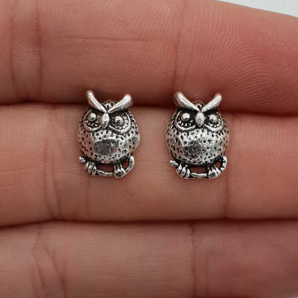 Silver owl oorknoppen