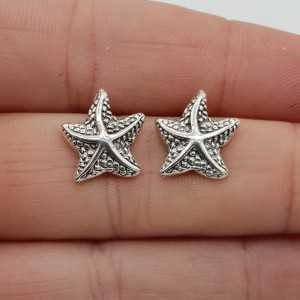 Silver starfish oorknoppen