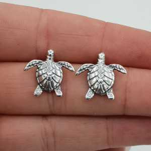 Silver turtle oorknoppen large