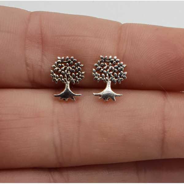 Silver oorknopjes tree of life