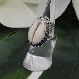 Silber ring mit Cowrie shell 16,5 mm