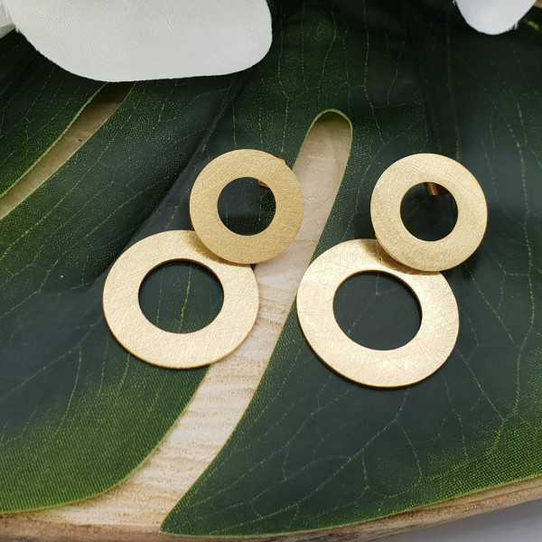 Earrings with brushed rings