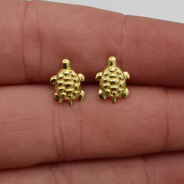 Vergoldete Schildkröte oorknoppen