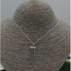 Silber Halskette mit haaientand Anhänger
