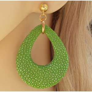 Vergulde oorbellen met druppel van appeltjes groene Roggenleer