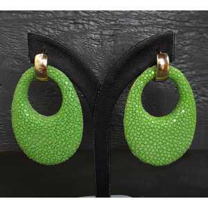 Vergoldete Kreolen oval Anhänger hellgrün Roggenleer