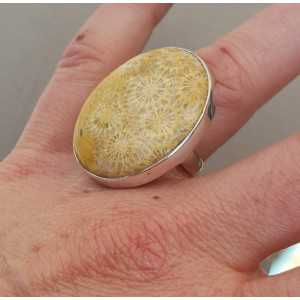 Silber ring set mit Fossiler Koralle 17 mm